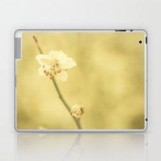 Solace Laptop & iPad Skin