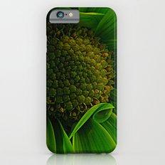 Green Daisy  iPhone 6 Slim Case