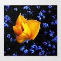 Flower Days Canvas Print
