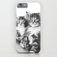 Double Dose Of  Kittens iPhone 6 Slim Case