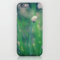 The Joy Of Spring iPhone 6 Slim Case