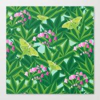 Rousseau's Lily Patch Canvas Print