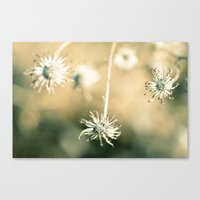 How Long Canvas Print