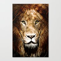 Fiercely Captivating  Canvas Print