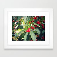 A Berry Nice Day Framed Art Print