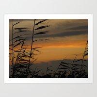 Montauk Sunset Art Print