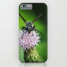 Bee and a flower Slim Case iPhone 6s