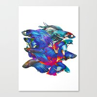 Fighting Fishes Betta Splendens Canvas Print