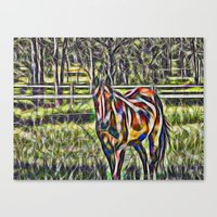 Horse In Paddock Canvas Print