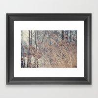 Swaying Grasses Framed Art Print