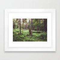 Primary forest Framed Art Print