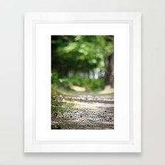 Walking your Path Framed Art Print