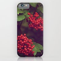 iPhone & iPod Case featuring Berries by aertstoon