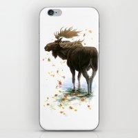 Moose Reflection iPhone & iPod Skin