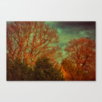 Trees, Trees, Trees Canvas Print