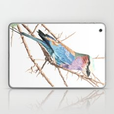 Lilac breasted roller Laptop & iPad Skin