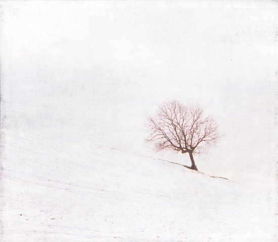 Lone Tree {Textured}  Art Print