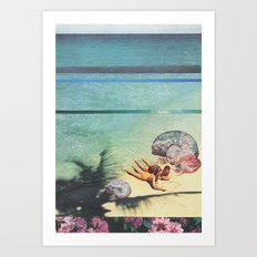 Sea Collections Art Print
