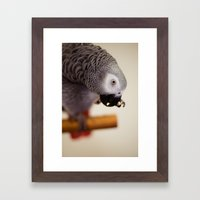 My Nose Is Itchy Framed Art Print