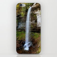 Lower Falls of Hills Creek iPhone & iPod Skin