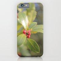 Autumn Day 2 iPhone 6 Slim Case