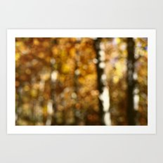 Autumn Aspens by Boone Speed Art Print