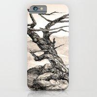 BRISTLECONE PINE iPhone 6 Slim Case
