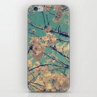 Vintage Cherry Tree Blos… iPhone & iPod Skin