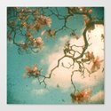 Magnolia Falls Canvas Print