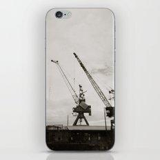 { dancing cranes } iPhone & iPod Skin