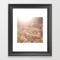 Fields. Framed Art Print