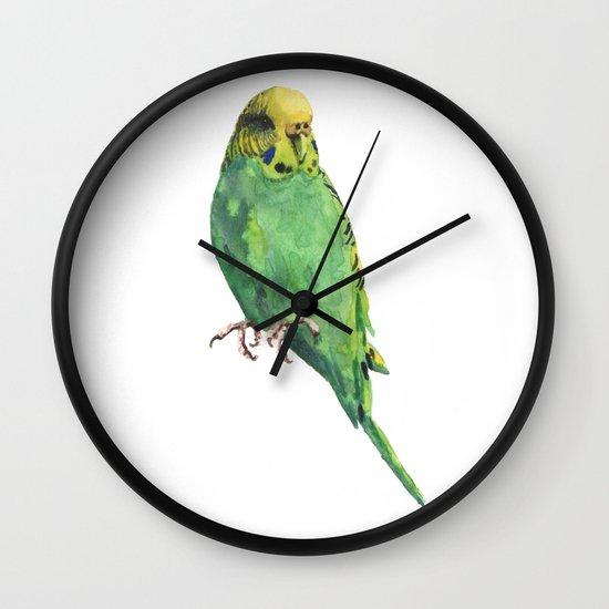 Budgie, parakeet, budgerigar, whos a pretty boy then, bird art Wall Clock