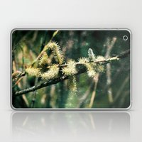 Magical Spring Laptop & iPad Skin