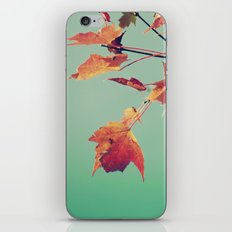 It's a Leaf Thing 2 iPhone & iPod Skin
