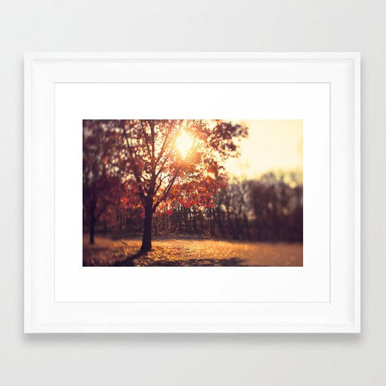 Autumn Sun  Framed Art Print