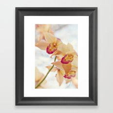 spring dream Framed Art Print