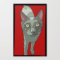 The Curious Cat Canvas Print