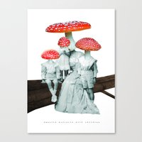 Amanita Muscaria With Ch… Canvas Print