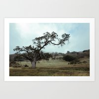 The love for Spooky Trees Art Print