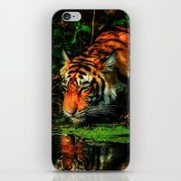 Paying Homage To The Jungle King iPhone & iPod Skin