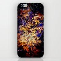 Wild Burst iPhone & iPod Skin