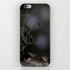 The Last Leaf iPhone & iPod Skin