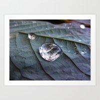 Diamonds And Pearls Art Print