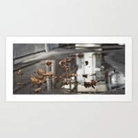 Puddle And Leaves Art Print