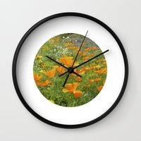 california poppy VIII Wall Clock