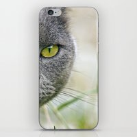 I SPY iPhone & iPod Skin