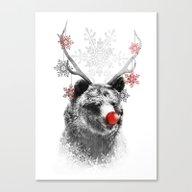 Rudolph The Bear Canvas Print