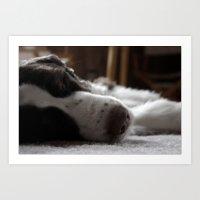 Sleepy Dog. Art Print