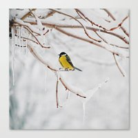 Tit And The Snow. Canvas Print