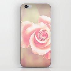 candy rose iPhone & iPod Skin